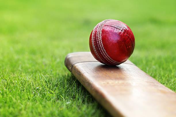 क्रिकेट प्रेमियों का आने वाले महीनों में होगा पूरा मनोरंजन जानिए कौन-कौन सी सीरीज होंगी आयोजित